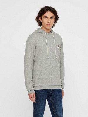 Jack & Jones Thistle sweatshirt