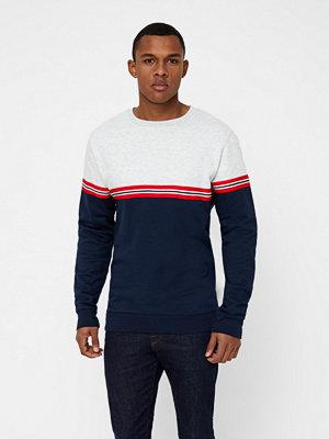 Tröjor & cardigans - Just Junkies Pilot sweatshirt