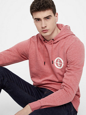 Street & luvtröjor - Only & Sons Orlando sweatshirt