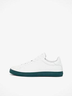 Selected David sneakers