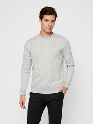 Tröjor & cardigans - Selected Crew neck sweatshirt