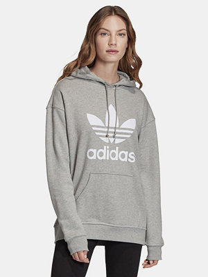 Street & luvtröjor - Adidas Originals Hoodie sweatshirt