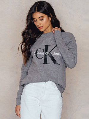 Calvin Klein Crew Neck True Icon Sweatshirt grå