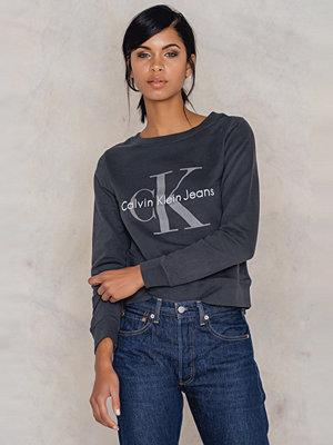 Tröjor - Calvin Klein Hadley True Icon Sweatshirt