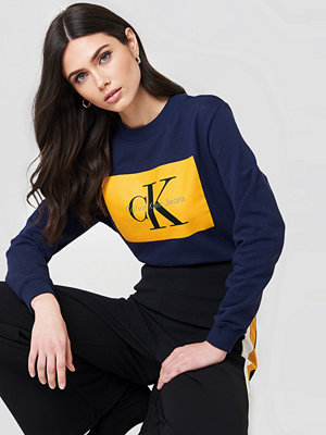 Tröjor - Calvin Klein Hebe True Icon Sweater