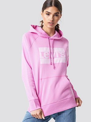 Levi's Graphic Sportswear Hoodie