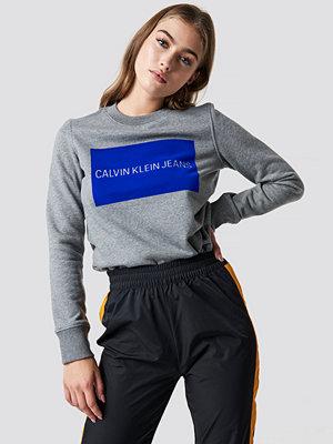 Calvin Klein Institutional Flock Box Reg Sweater