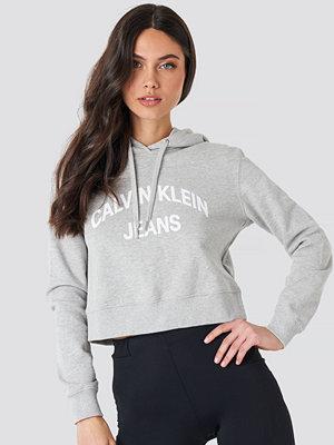 Calvin Klein Curved Logo Crop Hoodie grå
