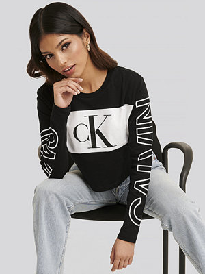 Calvin Klein Blocking Statement Logo Ls Tee multicolor