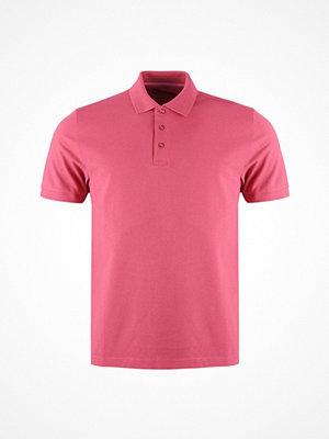 Pikétröjor - Alan Paine Falmouth Cotton Pique Polo Shirt With Tonal Undercollar - Updated Fit