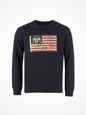 Tröjor & cardigans - Ralph Lauren Flag-Long Sleeve-Sweater Summer Navy