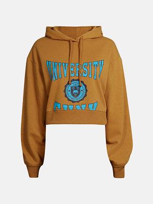 Street & luvtröjor - Bik Bok Pete sweater - Brun