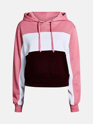 Street & luvtröjor - Bik Bok Ivy 3 sweater - Multi