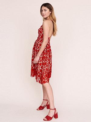 Gina Tricot Sadie spetsklänning