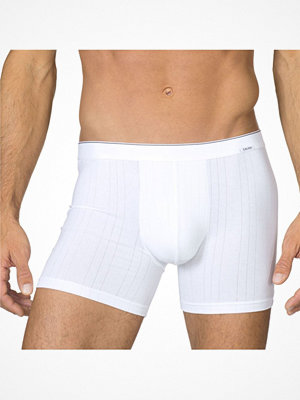 Calida Pure & Striped Boxer 26117 White