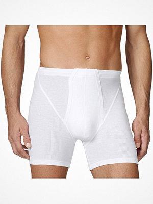 Calida Cotton 2 New Boxer 20710 White