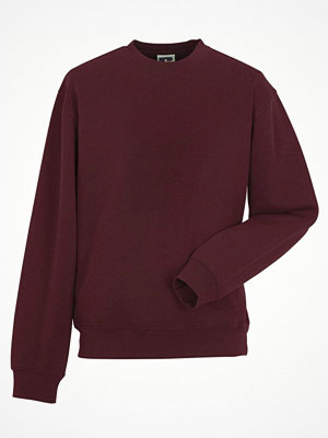 Russell Authentic Sweat Wine red