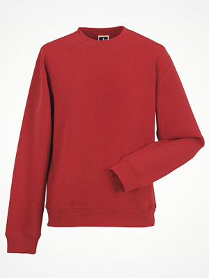 Russell Authentic Sweat Red