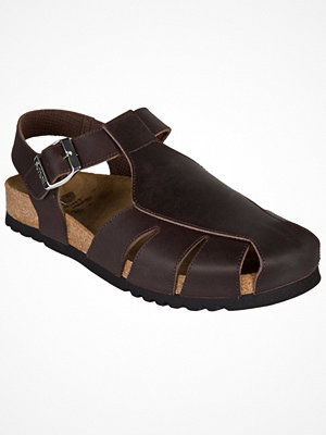 Tofflor - Scholl Sisare AD  Dark brown leather