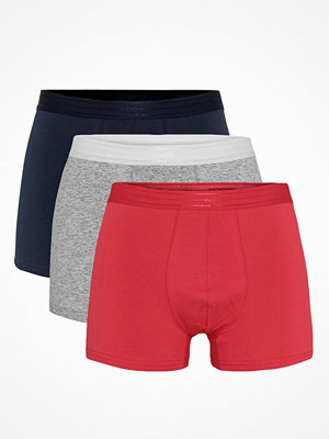 WESC 3-pack Stan Boxer Brief Multi-colour