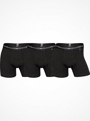 JBS 3-pack Modern Tights Bamboo Black