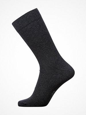 JBS Socks Darkblue