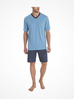 Calida Larry Short Pyjama Blue