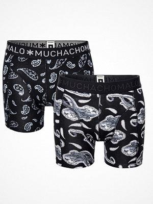 Muchachomalo 2-pack Paisley Boxer Blue/White