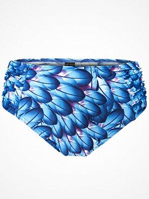 Missya Bluebell Bikini Midi Print Blue Pattern