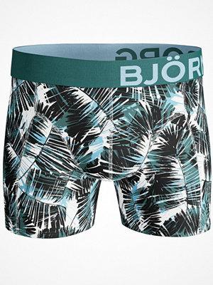 Björn Borg Shorts Summer Palm  Green/White