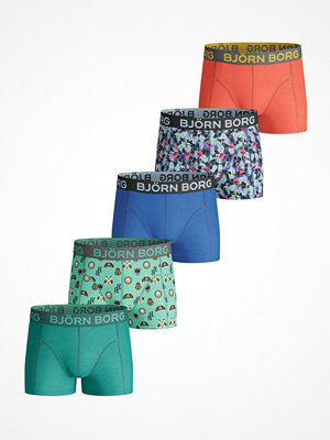 Björn Borg 5-pack Badges And Flamingos Shorts For Boys  Multi-colour