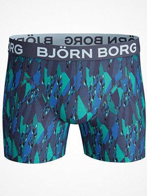 Björn Borg Super Shade Shorts Multi-colour