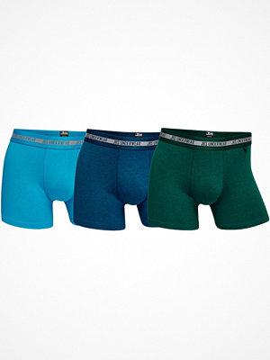 JBS 3-pack Modern Tights Bamboo Blue/Green