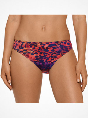 Primadonna Sunset Love Bikini Briefs Rio Pattern-2