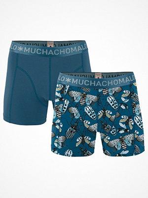 Muchachomalo 2-pack Cotton Modal Bugs Boxer Blue Pattern