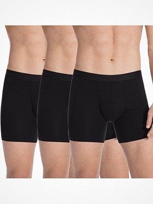 Calida 3-pack Natural Benefit Boxer Brief Black
