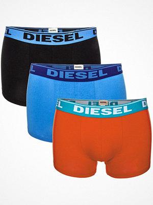 Diesel 3-pack Shawn Boxer Trunk Seasonal Edition Black/Blue