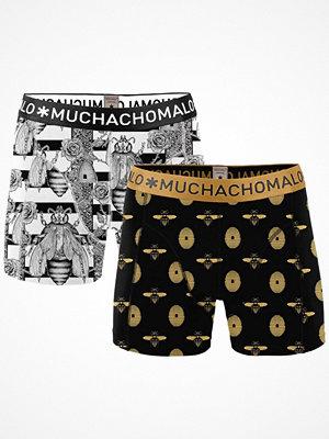 Muchachomalo 2-pack Beehive Pinata Boxer Black/White