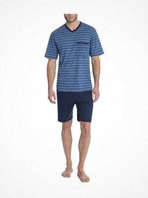 Pyjamas & myskläder - Calida Ferris Short Pyjama Blue