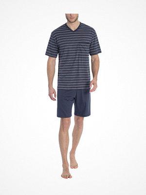 Pyjamas & myskläder - Calida Ferris Short Pyjama Navy-2