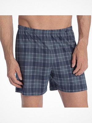 Calida Prints Boxer Shorts 24115 Navy Checked