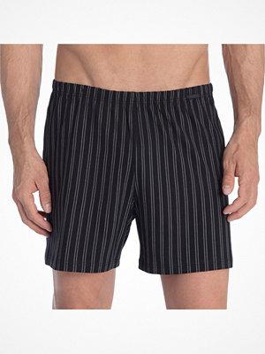 Calida Prints Boxer Shorts 24115 Black striped