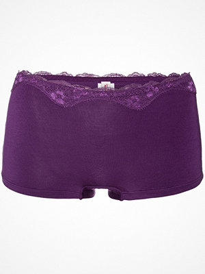 Triumph Touch Of Modal Short Deep purple