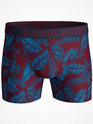 Björn Borg Core NY Palmleaf Shorts Red Pattern-2
