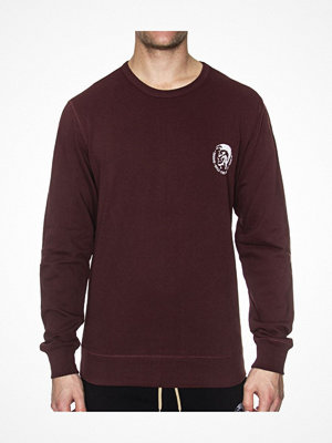 Diesel Willy Sweatshirt Wine red