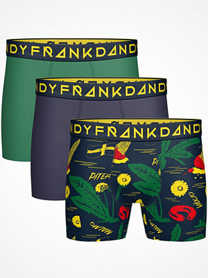 Kalsonger - Frank Dandy 3-pack Swewaii 3.0 Boxer Multi-colour