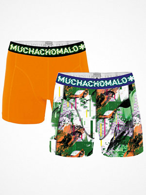 Muchachomalo 2-pack Life Is a Glitch Boxer Green/orange