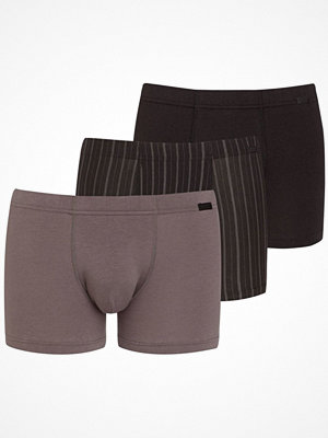 Jockey 3-pack Cotton Plus Trunk Grey