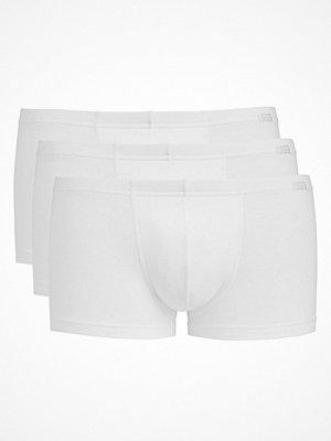 Jockey 3-pack Cotton Plus Short Trunk White
