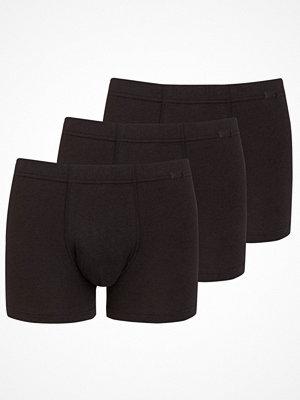 Kalsonger - Jockey 3-pack Cotton Plus Trunk 3XL Black